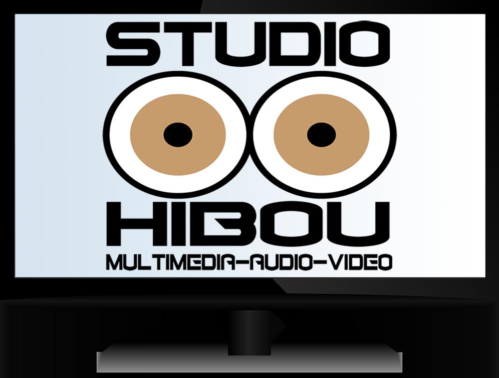moniteur-ordi-logo-studiohibou-bleu