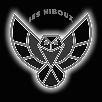 Logo Les Hiboux GRIS